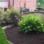 Big C Lawn and Landscaping - Mulch Bed w/ River Rock Borders - Spring Cleanup, 2014 - 4