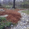 Big C Lawn and Landscaping - Pine Straw Mulch Job w/ River Rock, 2014 - 44