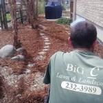 Big C Lawn & Landscaping