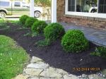 Big C Lawn and Landscaping - Mulch & Spring Cleanup, 2015 - 79